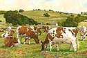 Dairy Maids:  by Anthony Forster